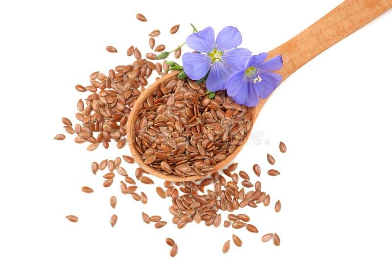 lnów ziarna w drewnianej łyżce z kwiatem odizolowywającym na białym tle flaxseed lub linseed zboża Odgórny widok obraz royalty free