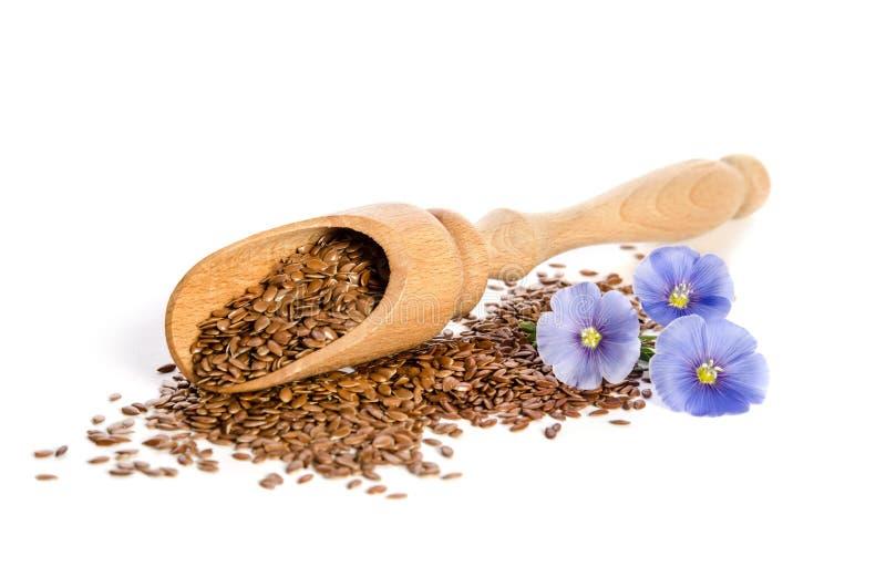 Lnów ziarna w drewnianych miarki i piękna kwiatach zdjęcia royalty free