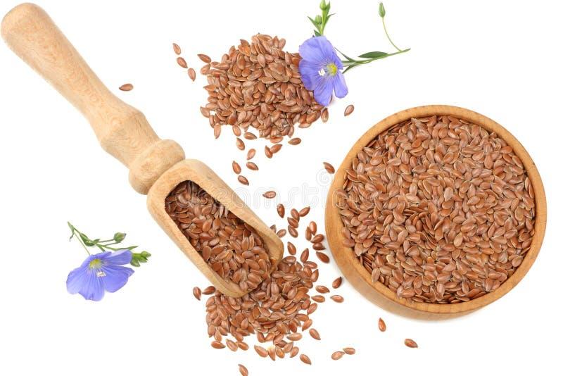lnów ziarna w drewnianym pucharze z kwiatem odizolowywającym na białym tle flaxseed lub linseed zboża Odgórny widok zdjęcia royalty free