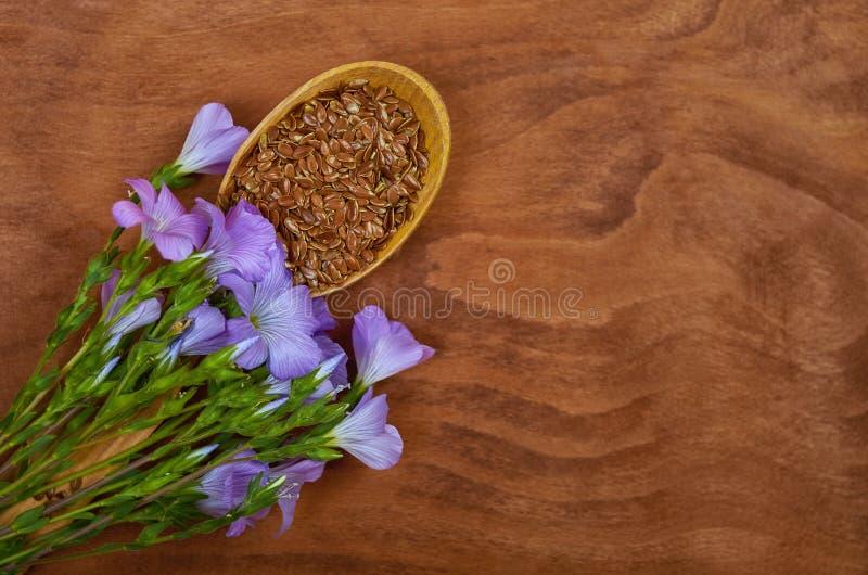 Lnów ziarna w rocznik łyżce z linum Lin i roślinami kwitną dalej obraz royalty free