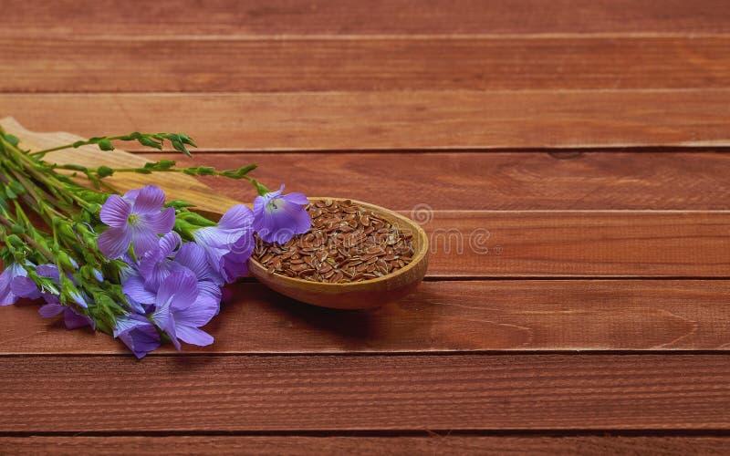 Lnów ziarna w rocznik łyżce z linum Lin i roślinami kwitną dalej obrazy stock