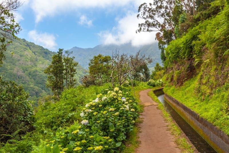 A lo largo del Levada, Madeira fotografía de archivo libre de regalías