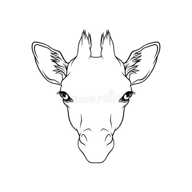 Lo schizzo delle giraffe si dirige, ritratto dell'illustrazione disegnata a mano in bianco e nero animale di vettore della forest illustrazione vettoriale