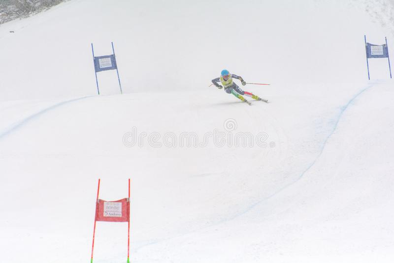 Lo sciatore dentro fa concorrenza durante l'eccellente di Audi FIS lo Ski World Cup Women alpino combinato il 28 febbraio 2016 in immagine stock