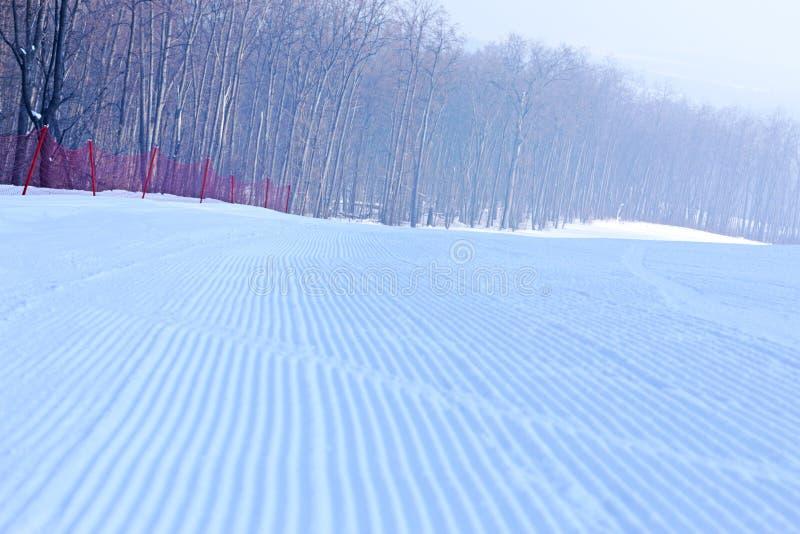 Lo sciatore guida sui pendii dello sci nell'inverno immagini stock
