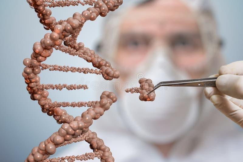 Lo scienziato sta sostituendo la parte di una molecola del DNA Concetto genetico di manipolazione del gene e di ingegneria fotografie stock