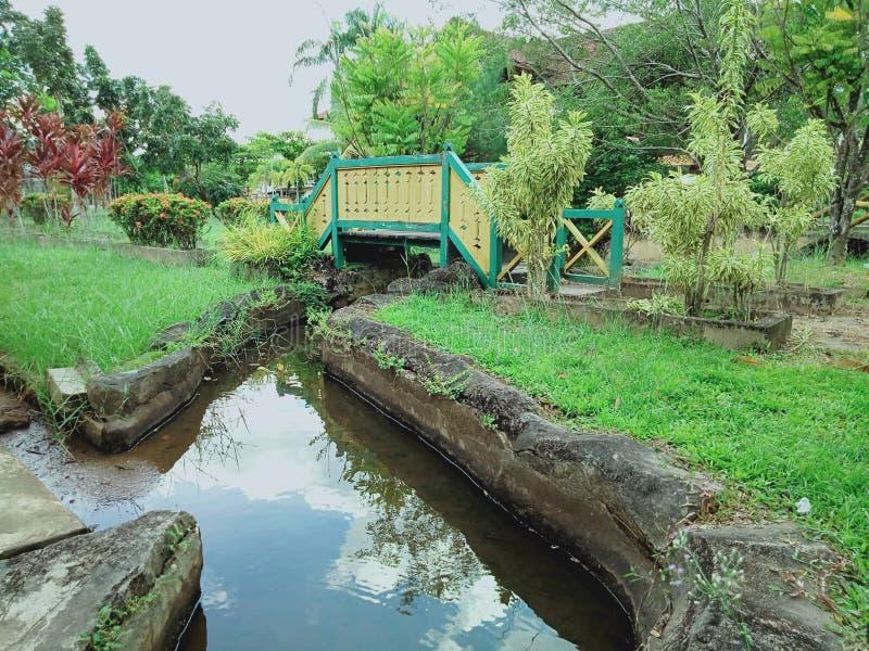 Lo scnery nel parco del museo ed i piccoli ponti da di legno con l'albero dentro intorno immagini stock libere da diritti