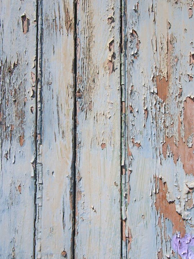 Lo sfaldamento stratificato ha sbiadito la vecchia pittura di pelatura blu sulla superficie approssimativa granulare della tavola immagini stock