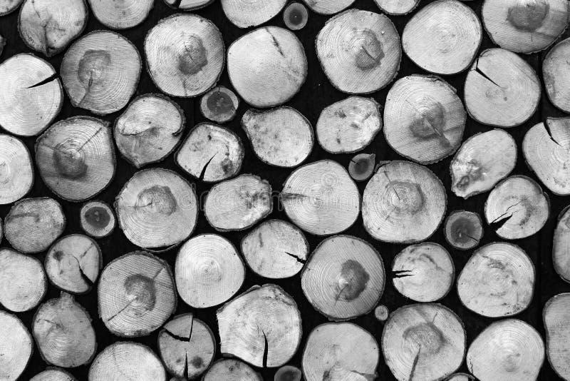 Lo sfondo naturale in bianco e nero di legna da ardere asciutta collega un pil fotografia stock