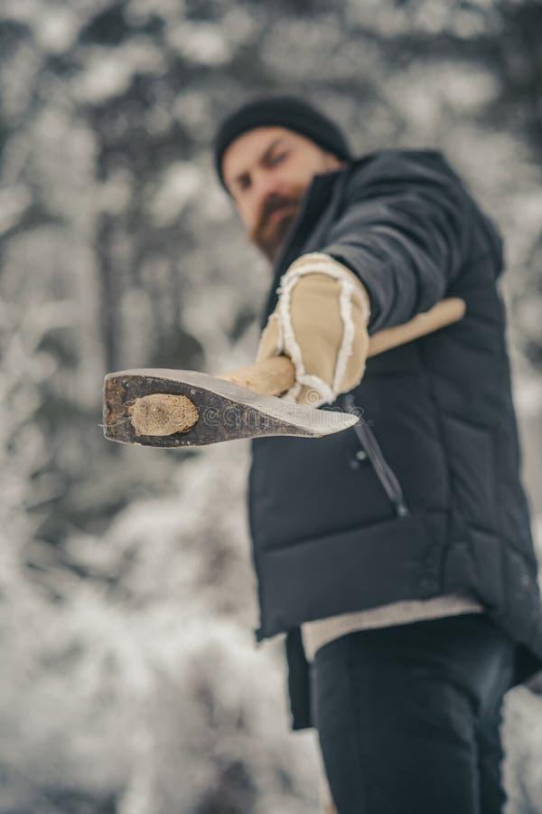 lo skincare e la barba si preoccupano nell'inverno, barba calda nell'inverno fotografie stock libere da diritti