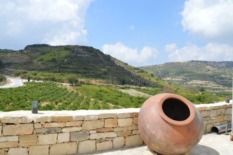 Lo splendore delle montagne e di giovane vino fotografia stock