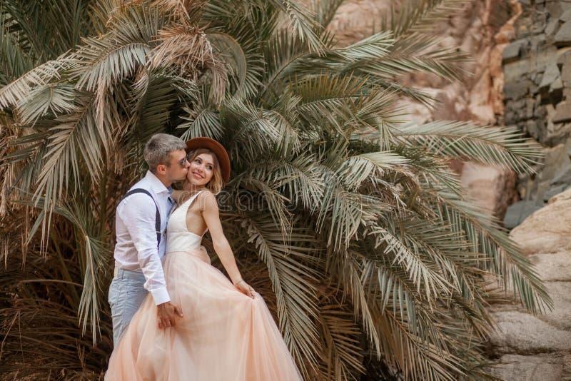 Lo sposo abbraccia e baci della sposa su fondo delle palme e delle rocce fotografia stock libera da diritti