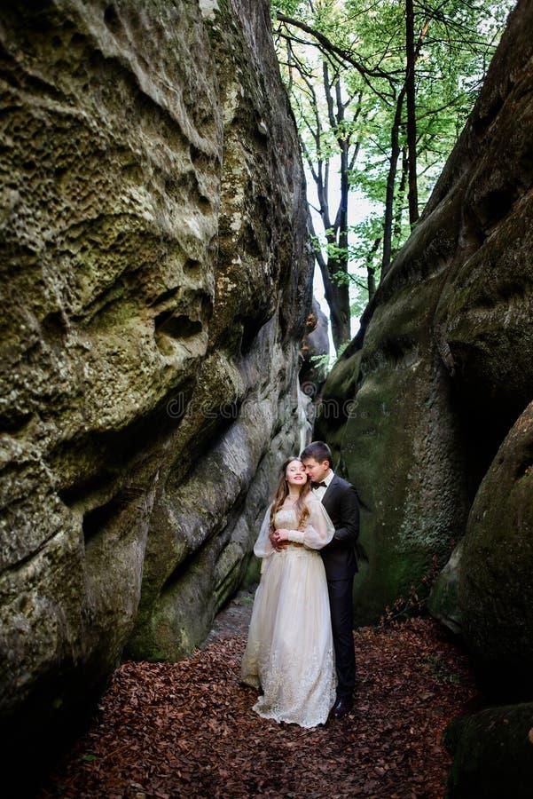 Lo sposo bacia la sposa da dietro fotografia stock libera da diritti