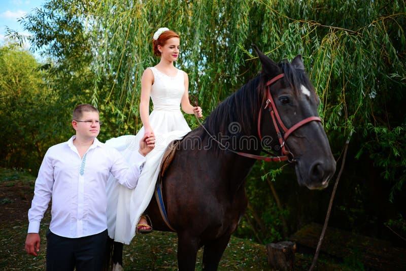 Lo sposo conduce il cavallo dalla briglia La sposa si siede nel saddl fotografia stock libera da diritti