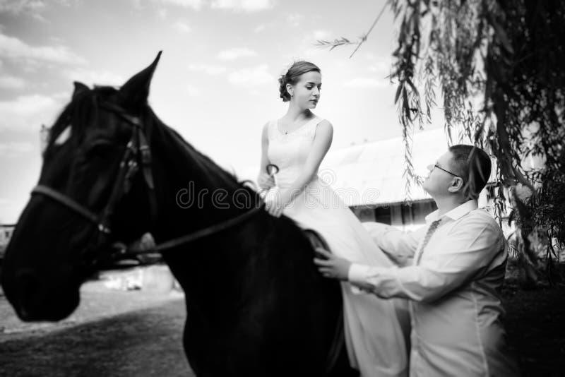 Lo sposo conduce il cavallo dalla briglia La sposa si siede nel saddl immagini stock libere da diritti