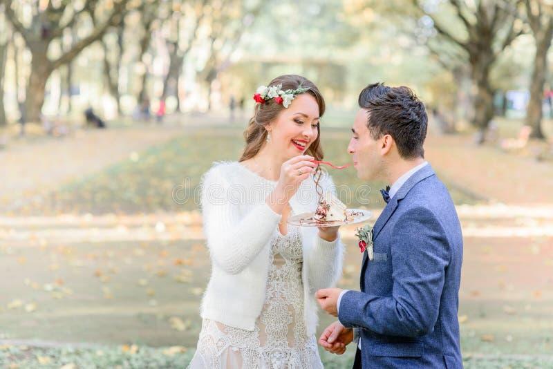 Lo sposo in giacca blu bacia la torta nunziale dalle mani del ` s della sposa fotografia stock libera da diritti