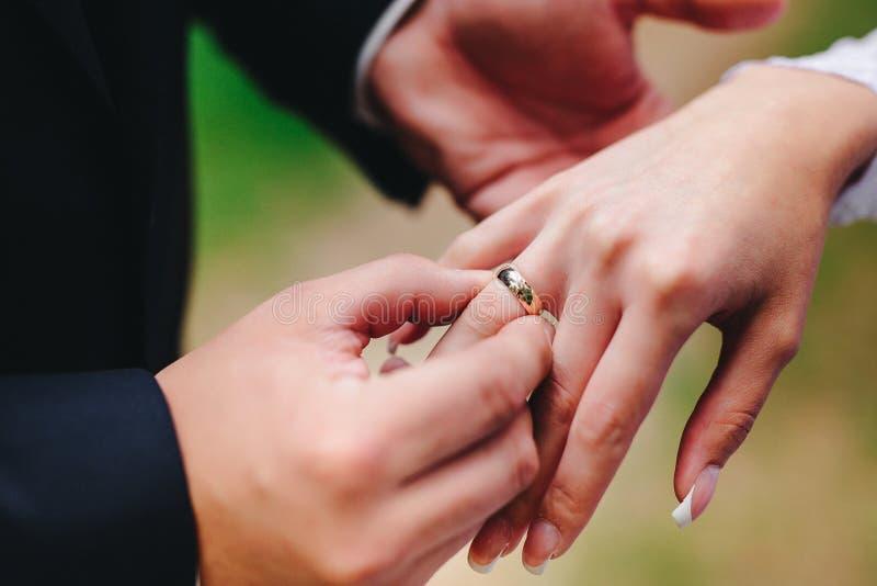 Lo sposo mette l'anello sulla sposa fotografia stock libera da diritti