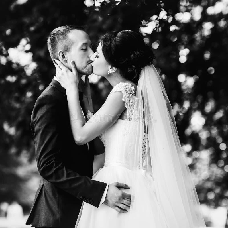 Lo sposo tiene l'offerta della sposa mentre lo bacia nel giardino immagine stock libera da diritti