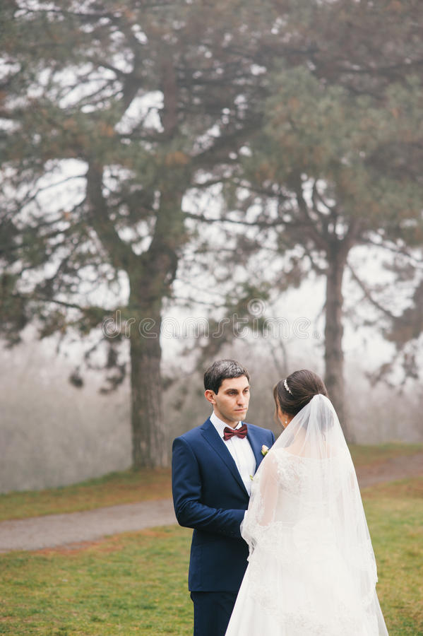 Lo sposo tiene la sposa a mano e la esamina immagine stock
