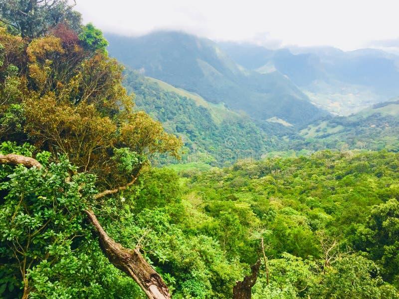 Lo Sri Lanka di amore fotografie stock
