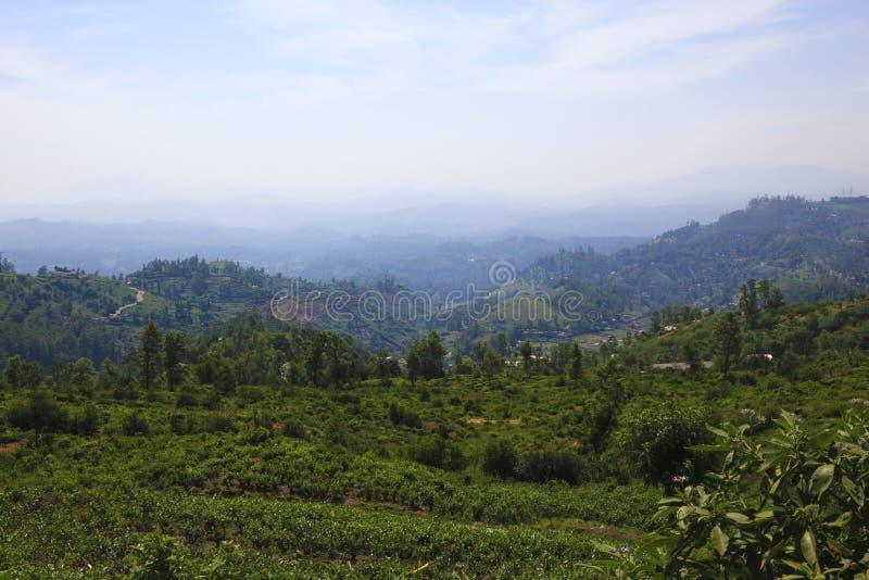 Lo Sri Lanka di stupore immagine stock libera da diritti