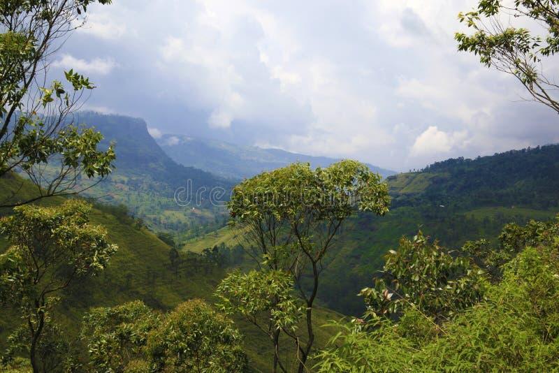 Lo Sri Lanka di stupore immagini stock libere da diritti
