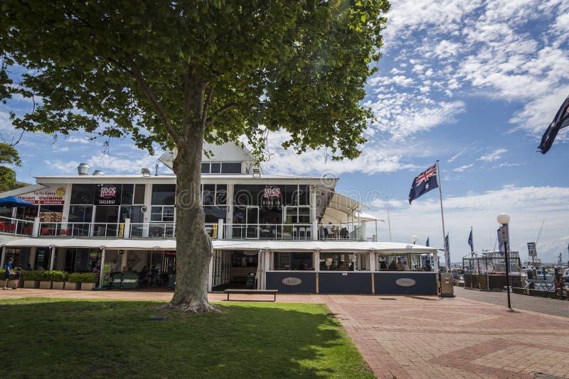 Lo steakhouse dell'Australia del maiale, Nelson Bay, NSW, Australia fotografia stock libera da diritti