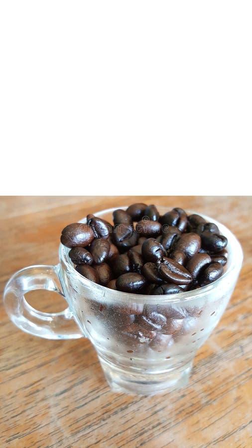 Lo stoccaggio dei chicchi di caffè in piccola tazza minuscola trasparente sulla tavola di legno, barra della caffetteria, ambiti  fotografia stock libera da diritti