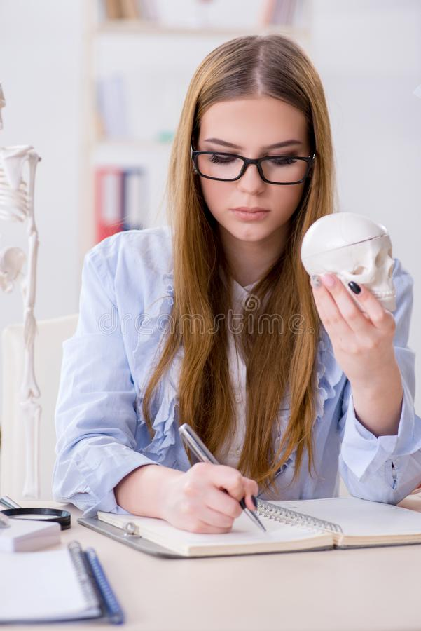 Download Lo Studente Che Si Siede Nell'aula E Che Studia Scheletro Immagine Stock - Immagine di ospedale, interno: 117976603