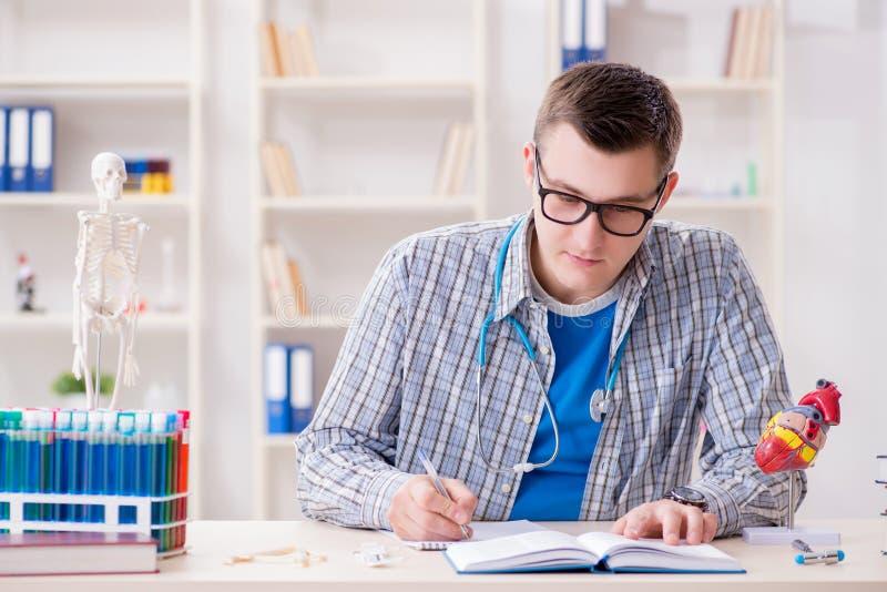 Download Lo Studente Di Medicina Che Studia Cuore In Aula Durante La Conferenza Fotografia Stock - Immagine di malattia, conferenziere: 117977708
