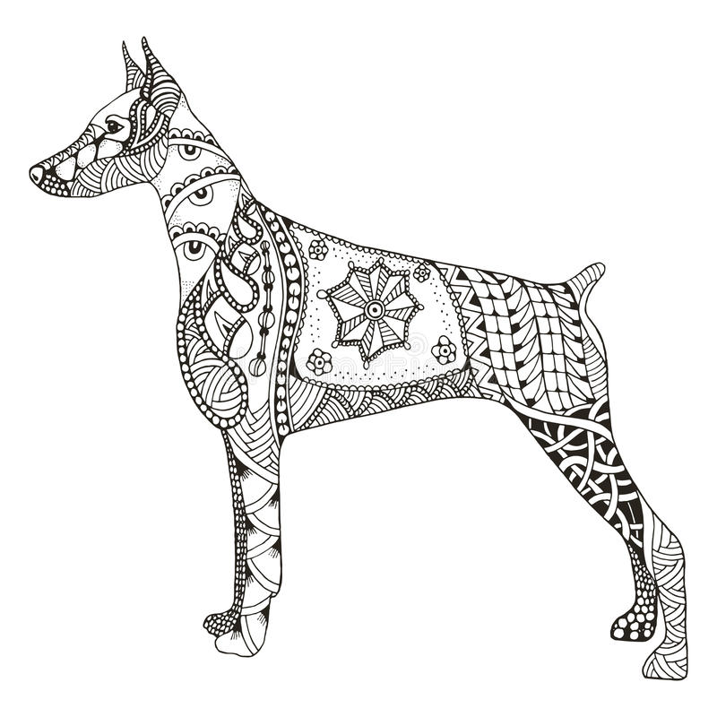 Lo zentangle del pinscher del doberman ha stilizzato, vector, illustrazione, libera illustrazione vettoriale