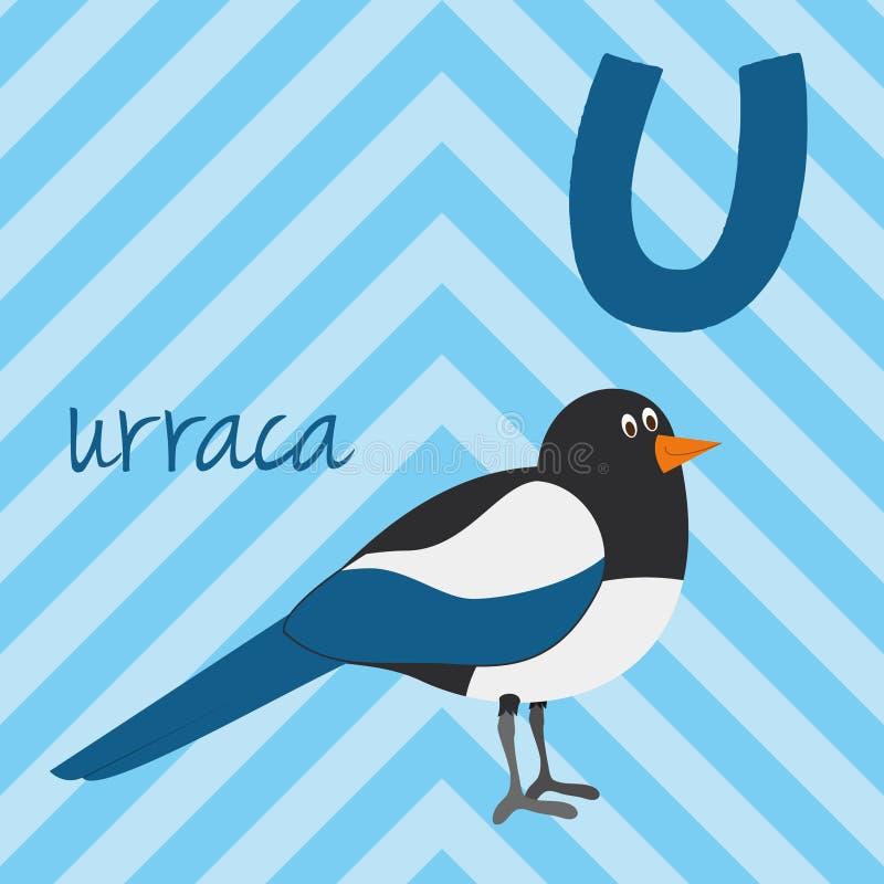 Lo zoo sveglio del fumetto ha illustrato l'alfabeto con gli animali divertenti Alfabeto spagnolo: U per Urraca illustrazione di stock