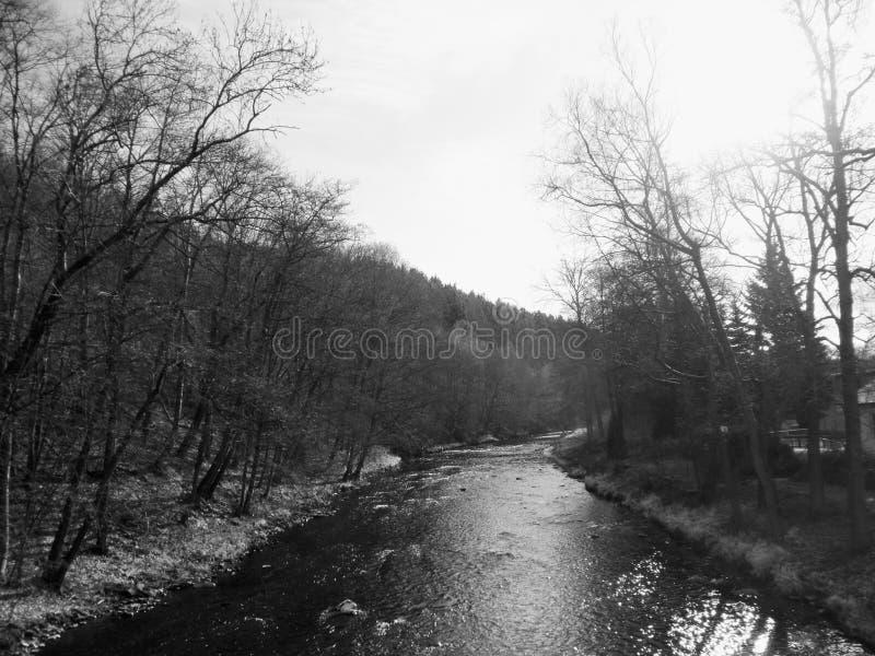Lo Zschopau nel Erzgebirge in Sassonia, Germania immagine stock libera da diritti