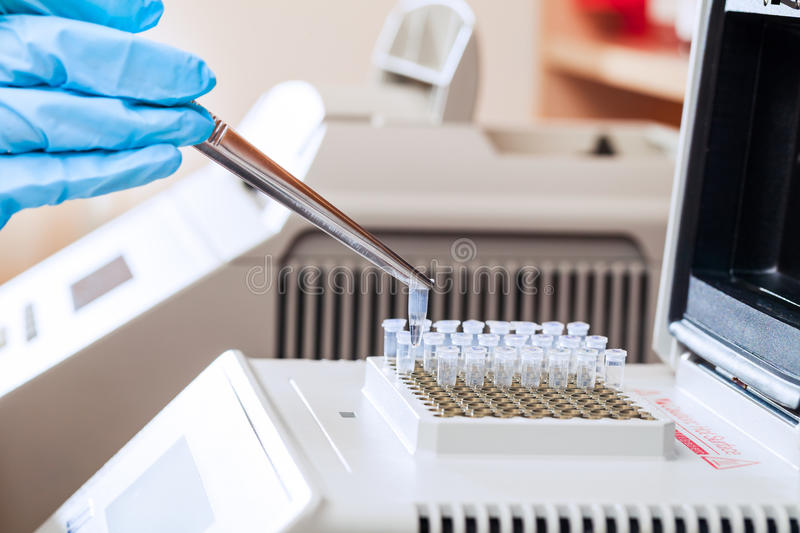 Loading DNA samples for PCR royalty free stock photos