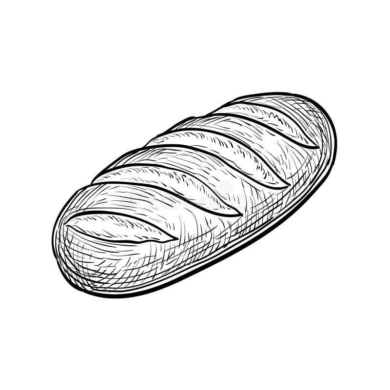 Loaf of bread. stock illustration