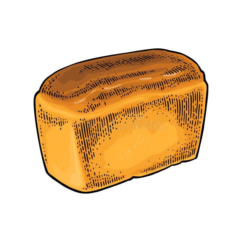 Loaf of bread. Vector color hand drawn vintage engraving vector illustration