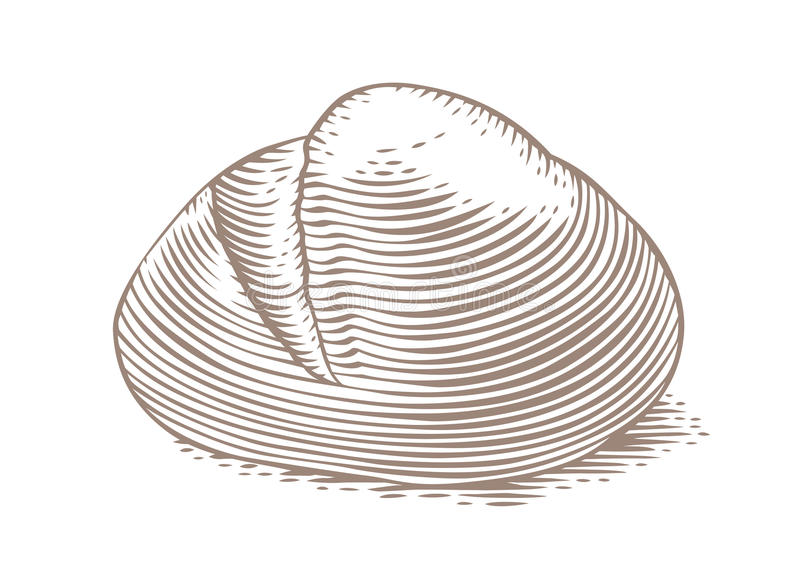 Loaf of white bread. Drawing of loaf of white bread on the white stock illustration