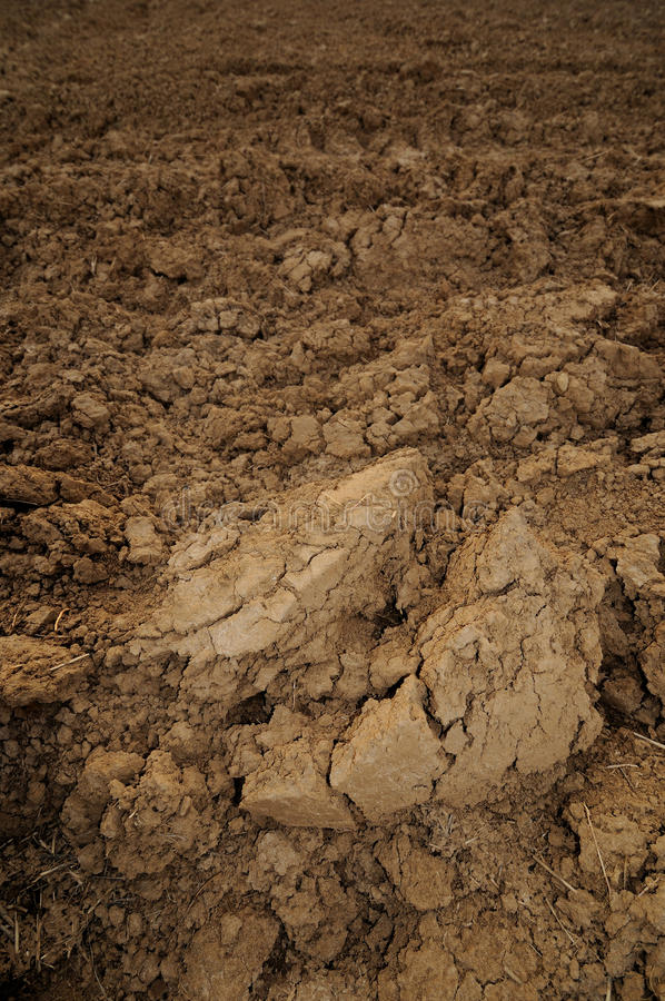Loamy soil royalty free stock image