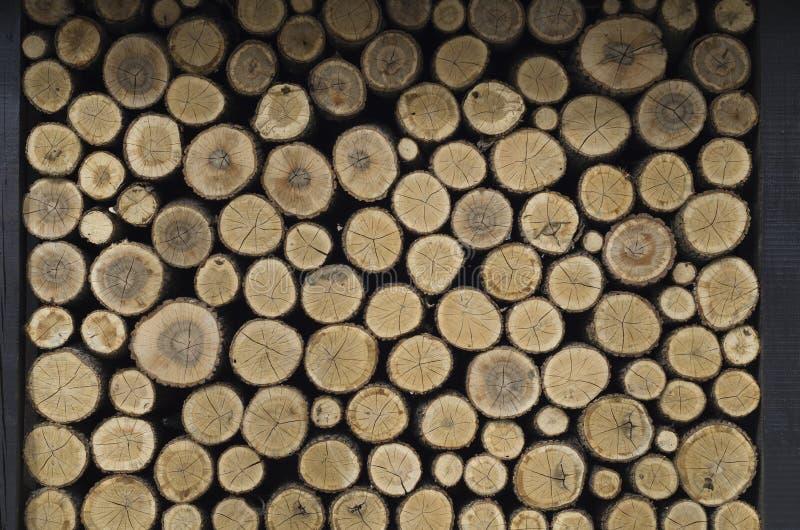 loan trä arkivfoto