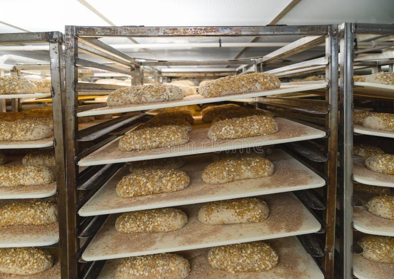 Loaves av bröd i ett preparera rum royaltyfri foto