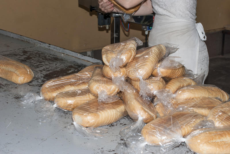 Loaves in bags. Many loaves of bread packed in bags in a bakery, to send to the store royalty free stock image