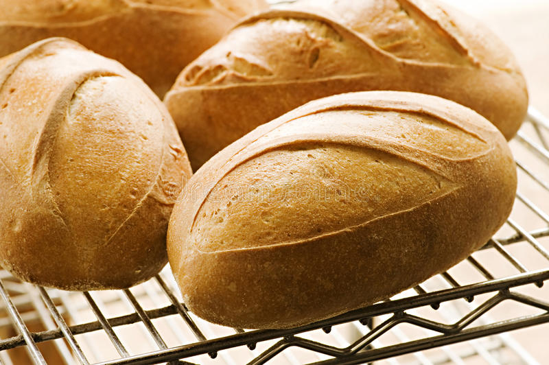 Download Loaves of Bread stock photo. Image of eating, flour, whole - 21166270