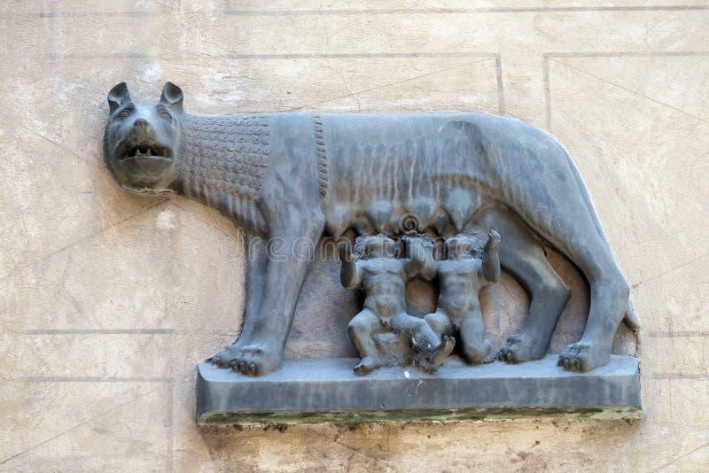 Lobo de Capitoline imagens de stock