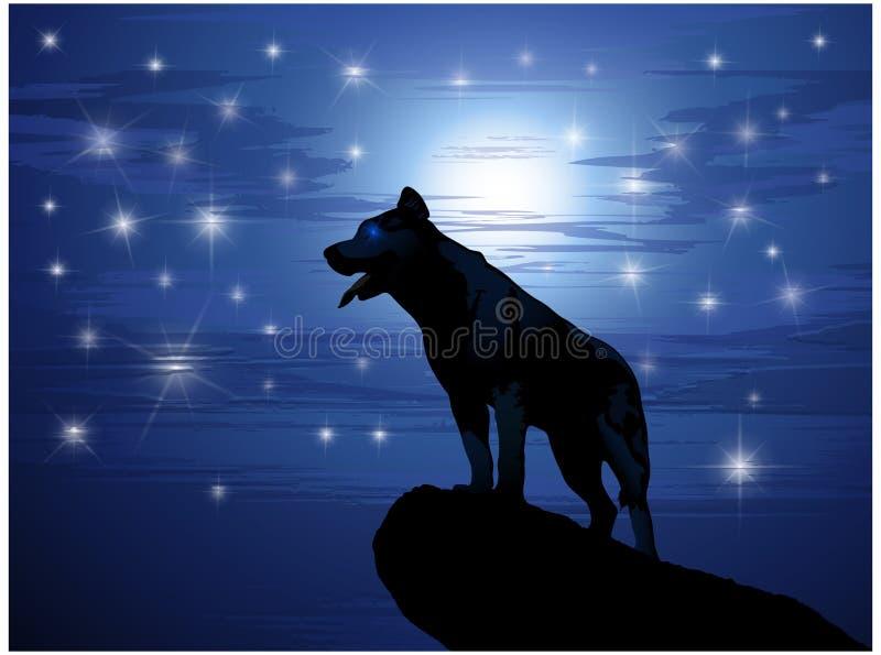 Lobo de encontro à lua e às estrelas ilustração stock