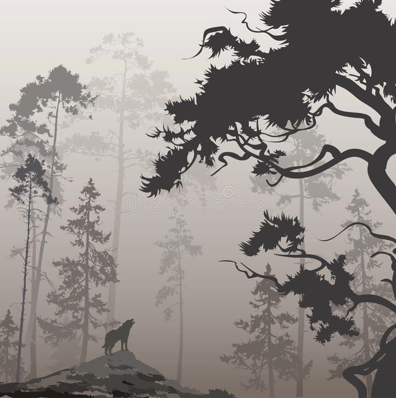 Lobo na floresta ilustração stock