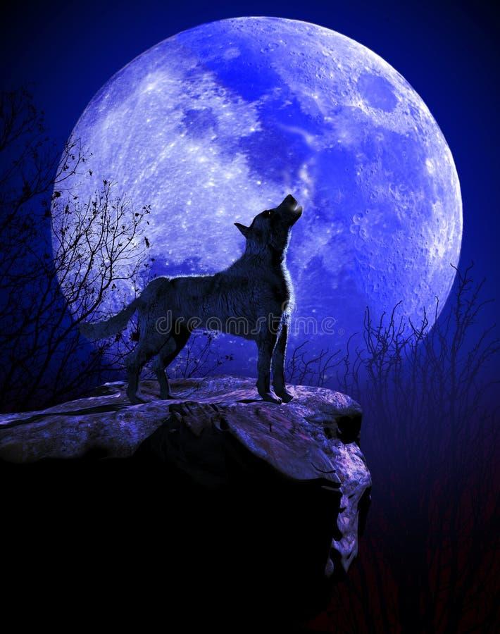 Lobo que grita en la luna azul ilustración del vector