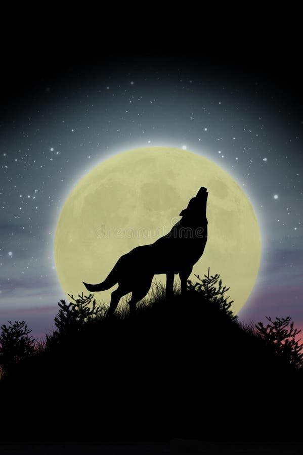 Lobo que urra na lua fotografia de stock