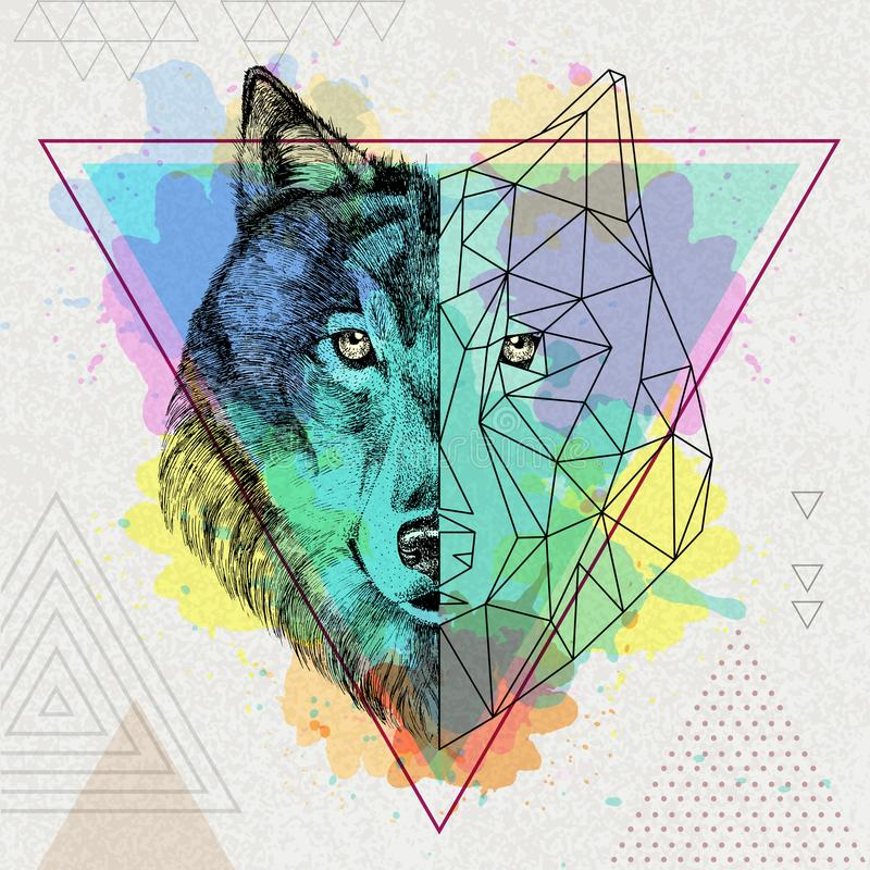Lobo realista del inconformista y poligonal animal ilustración del vector