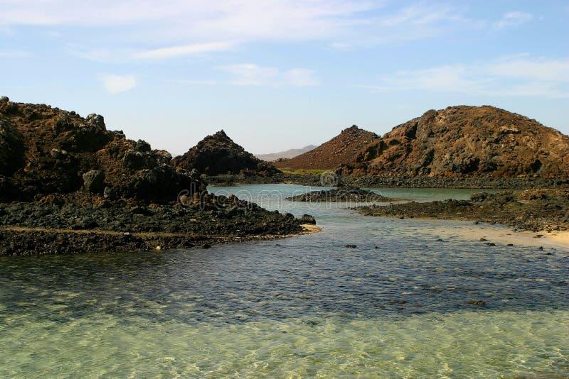 Download Lobos imagem de stock. Imagem de turista, rochas, spain - 61179