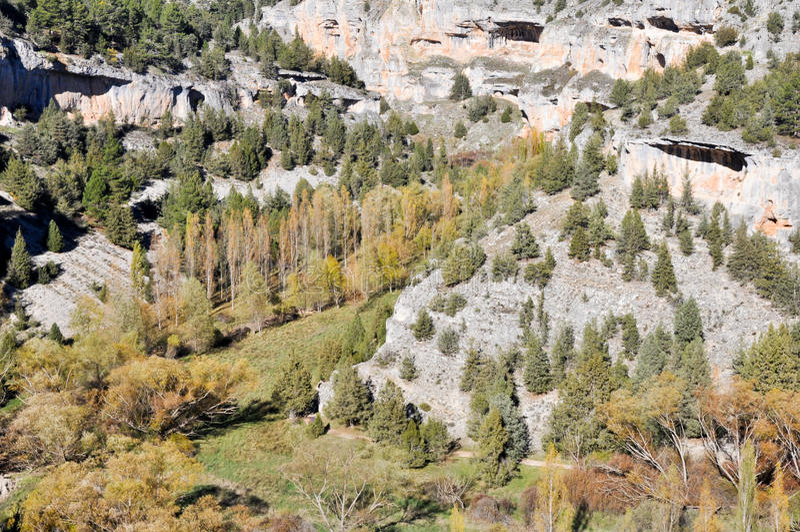 Lobos-Fluss Schlucht, Soria (Spanien) lizenzfreie stockbilder